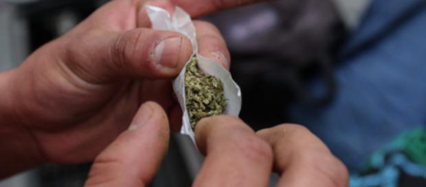 Preso por un churro de mariguana? Proponen 6 claves para no ... - animalpolitico.com