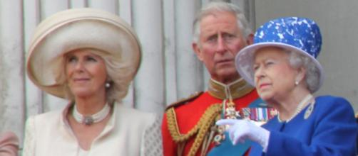 Prince William and Prince Harry reportedly want to stop Camilla Bowles from becoming Queen. [Image credit: Carfax2 / Wikipedia]