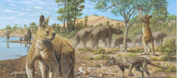 Diprotodon, el marsupial más grande de Australia pesaba tres toneladas.- australiance.com