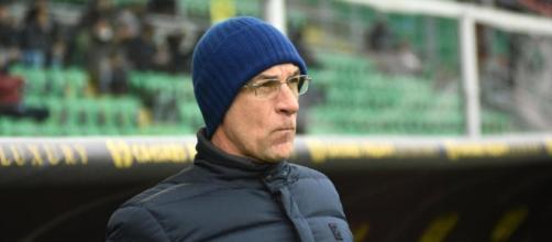 Calciomercato Genoa: rinforzi in arrivo per Ballardini