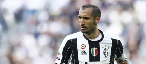 Giorgio Chiellini, 33 anni, difensore della Juventus e dell'Italia