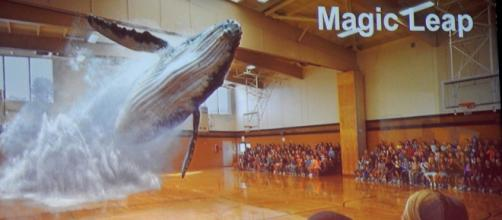 Magic Leap technology in action: Whale Hologram [Photo via Michael Coghlan, Flickr]