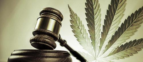 Mexico va a legalizar la marihuana