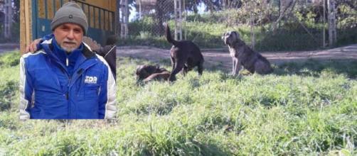Immagine dei tre cani di repertorio. In foto a sinistra Agatino Zuccaro, 52 anni.