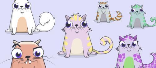 CryptoKitties, l'allevamento virtuale di gattini che fa diventare ricchi