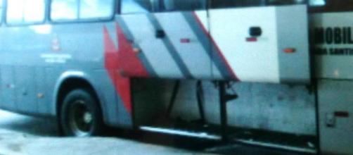 Pitbull morre de calor durante viagem em ônibus sem ventilação