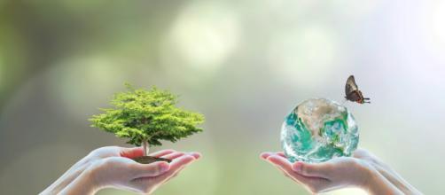 A preocupação com o crescimento econômico no qual constatou-se que este poderia levar ao esgotamento dos recursos naturais