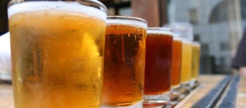 Beer sampler by QuinnDombrowski via Flickr