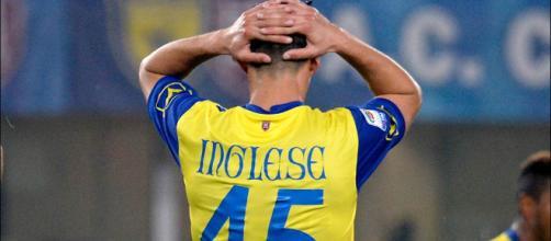 Calciomercato Napoli Inglese Giaccherini - fantagazzetta.com