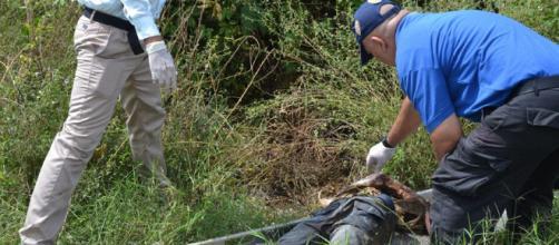 LaPatilla Hallaron cinco osamentas cerca del ferrocarril en ... - envenezuela1.com