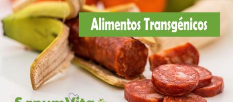 Controversia: ¿Cuánto daño hacen los alimentos transgénicos?
