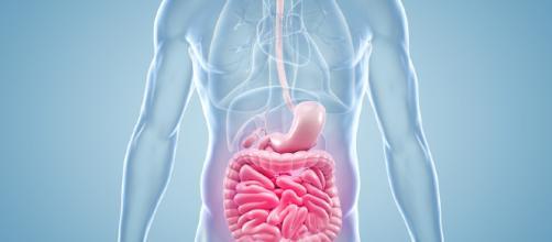 Nuova terapia per la malattia di Crohn