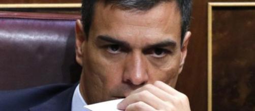 Pedro Sánchez, líder del partido socialista