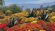 South Africa: A country of unmistakable beauty