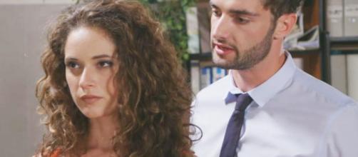 Niko e Susanna alle prese con la difesa di Luca Grimaldi