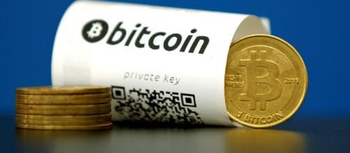 No último ano,bitcoin cresceu 5000%.