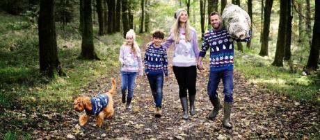 Aldi sells matching Christmas jumpers for adults, kids and dogs ... - warringtonguardian.co.uk