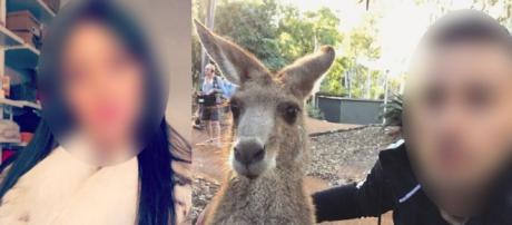 Tarek Benattia au casting des Marseillais Australia ? Les indices qui sèment le doute !