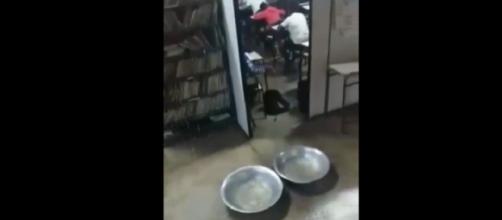 Alunos e funcionários sofrem com goteira e alagamento em escola (Foto: Captura de vídeo)