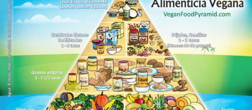 Dietas vegetarianas y veganas, ¿son buenas?