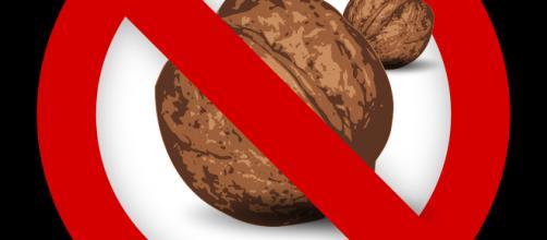 Nut-Free snack takes off - Image courtesy of Kurious on Pixabay