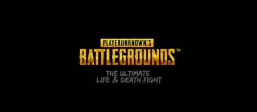 Player Unknown Battleground - Image credit CC X SA 4.0 | Wikimedia