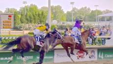 Thoroughbred race horses perish in California wildfires
