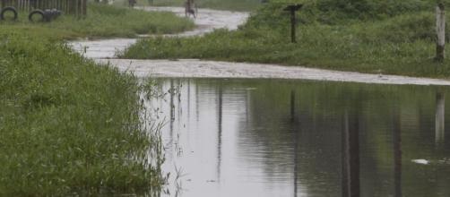 Chuva dá uma amenizada no estado de Santa Catarina