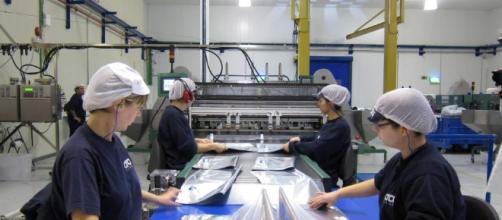 Empresas diversifican su producción.