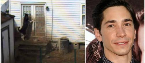 Justin Long Stars as Charlie, a Neglected 'Backyard Dog'   PETA - peta.org