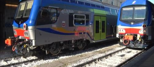 Milano, aggredita da due uomini in treno.