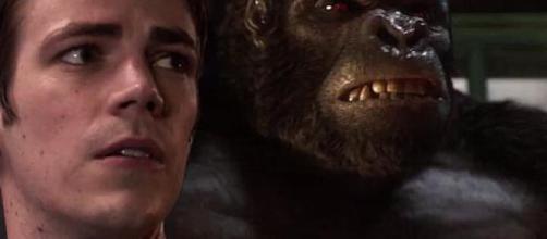 The Flash Saison 3 : Gorilla Grodd en tant que principal vilain de ... - mcm.fr