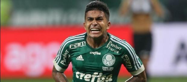 Ituano x Palmeiras: saiba como assistir ao jogo ao vivo na TV e na internet