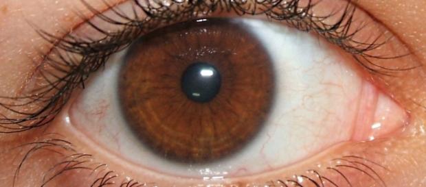 Você tem olhos castanhos? Saiba que você tem algo muito especial ... - jornalciencia.com