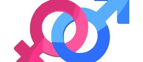 curiosidades estranhas sobre sexo e sexualidade