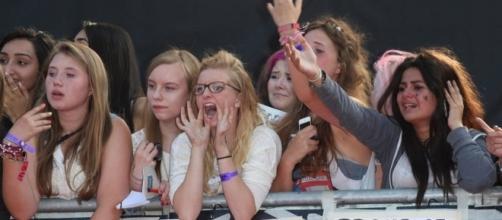 Os fãs do One Direction perderam a cabeça