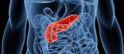 Tumore al pancreas, patologia in crescita: i sintomi da tenere d ... - lastampa.it