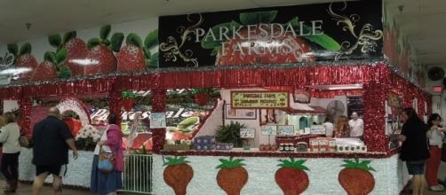 Florida Strawberry Festival – Parkesdale's Masterpieces ... - parkesdale.com