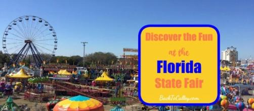 How to Have Fun at the Florida State Fair — A Tampa Lifestyle ... - backtocalley.com