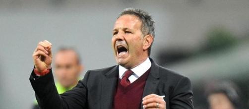 L'allenatore del Torino Sinisa Mihajlovic La Stampa - lastampa.it