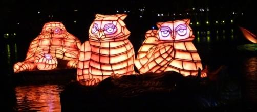 The animal lantern floats are breathtaking. (Photo by Barb Nefer)