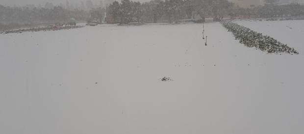 Copiose nevicate sul Salento a Gennaiom