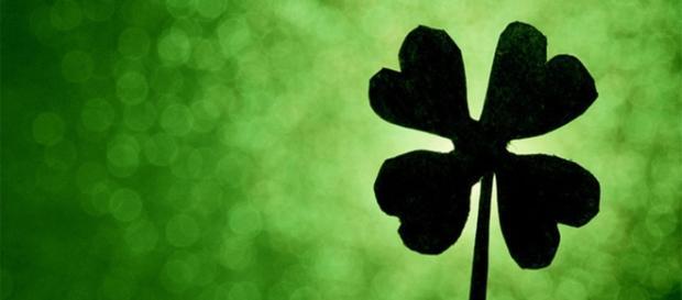 Para muitos, o trevo de 4 folhas é um amuleto da sorte