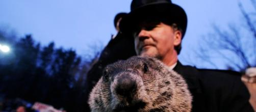 È il giorno della marmotta, e l'inverno sarà ancora lungo - Panorama - panorama.it