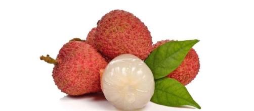 Fatal fruit - Lychees contain toxins