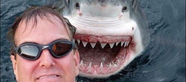 As selfies que não deram certo