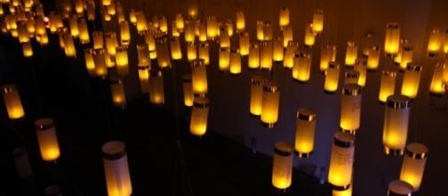 Jessica Maffia created the lantern installation as a peaceful protest of the presidency. / Photo via Jessica Maffia, used with permission.