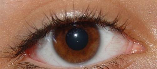 Pessoas com olhos castanhos são especiais.