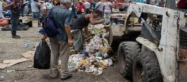 Pesadelo socialista: pessoas vasculham o lixo em busca por comida