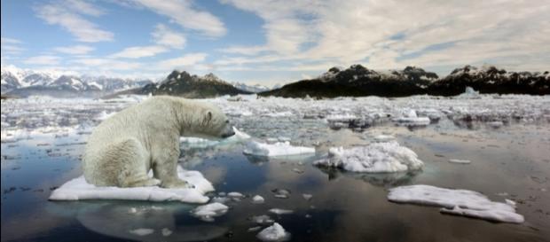 Aquecimento global - mito ou realidade?| GGN - com.br